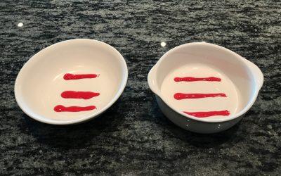 プラスチック製の皿と陶器の皿への着色実験