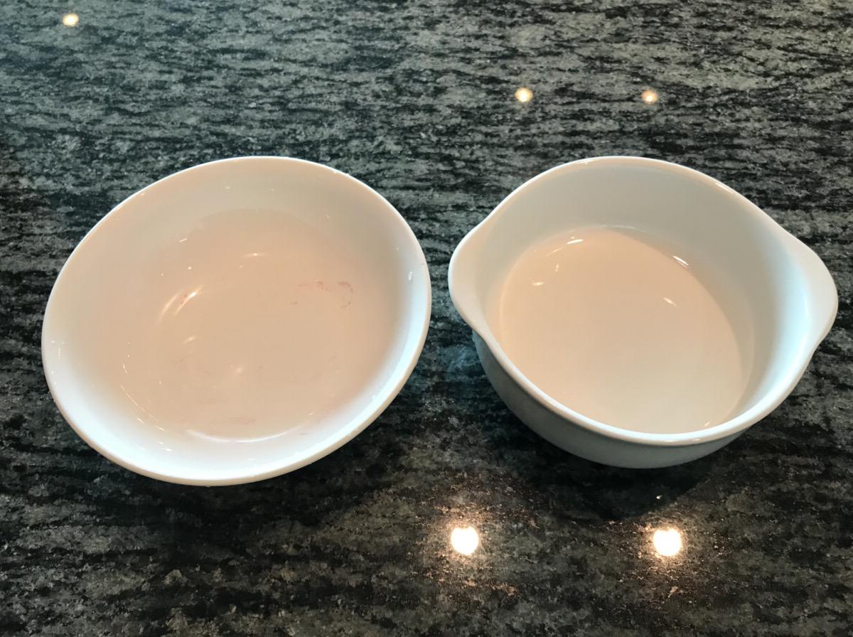 プラスチック製の皿と陶器の皿への着色実験後