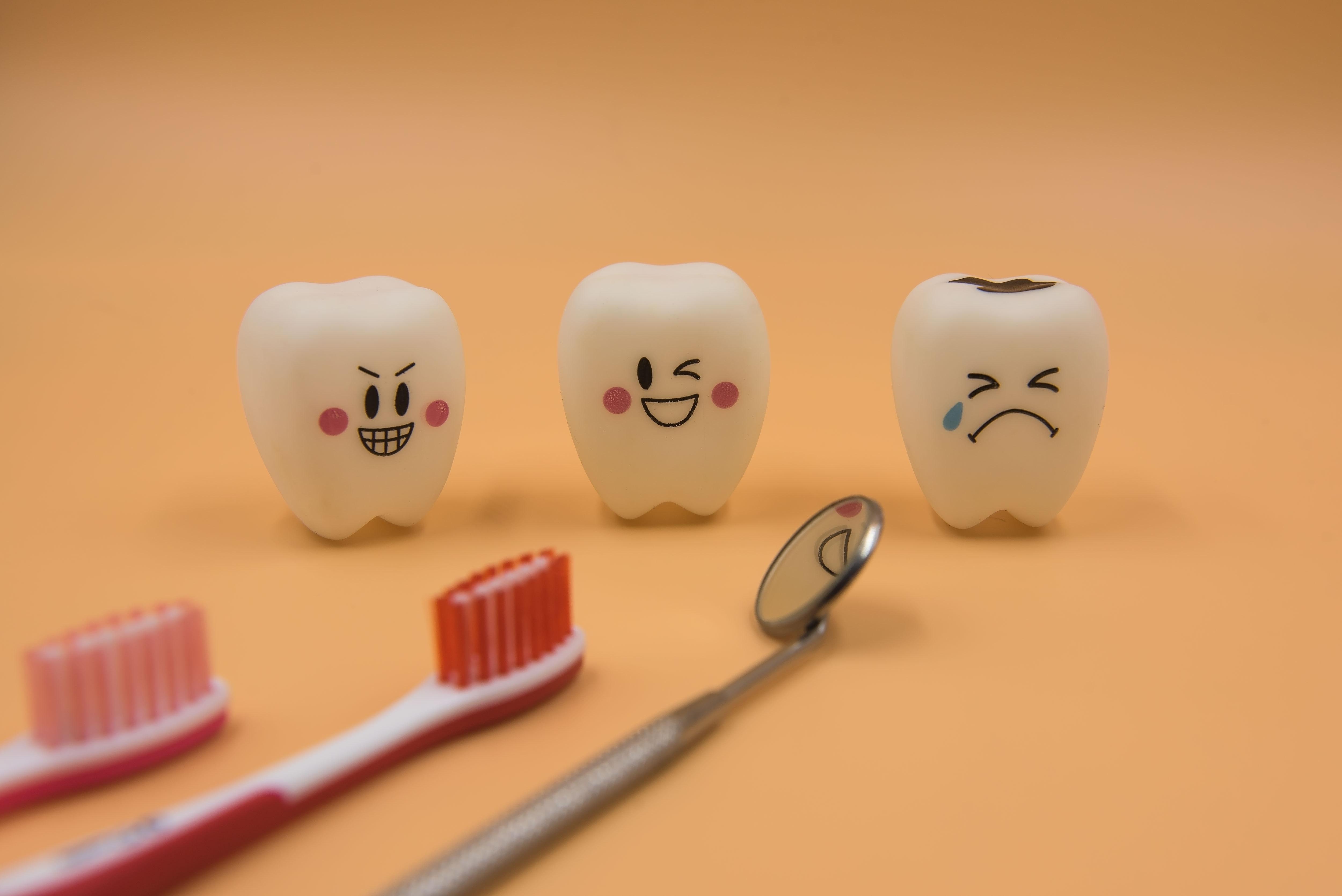 歯のおもちゃ