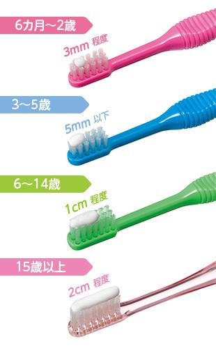 年齢別の歯磨き粉の量