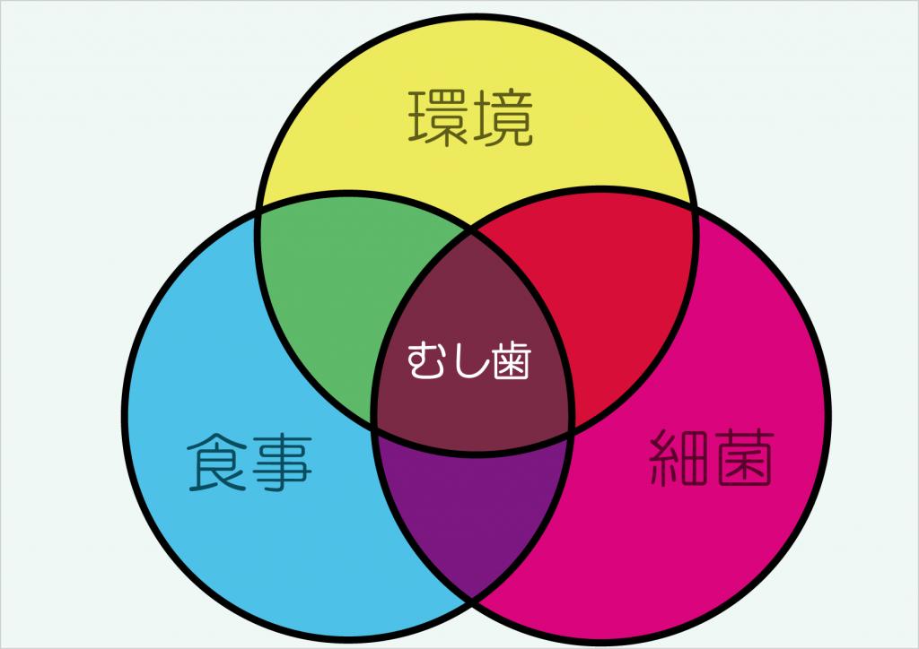 むし歯構成要素の3つの輪